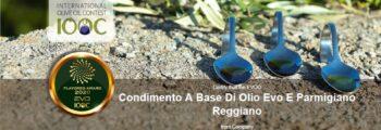 EVO-IOOC – Condimento a base di olio extravergine di oliva e Parmigiano Reggiano©