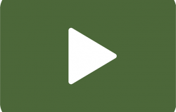video poldo